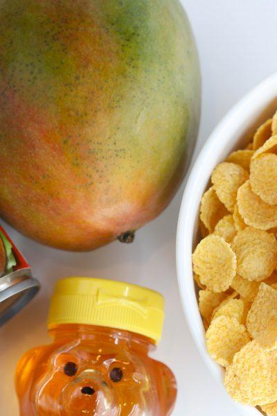 coconut milk, corn cereal, mango honey